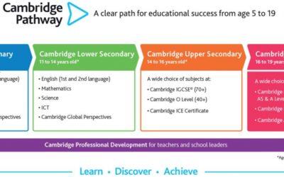SCIA's Curriculum Overview